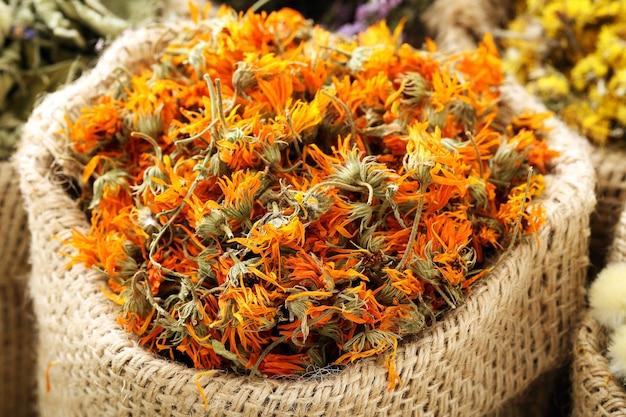 Сушеные цветы на земле