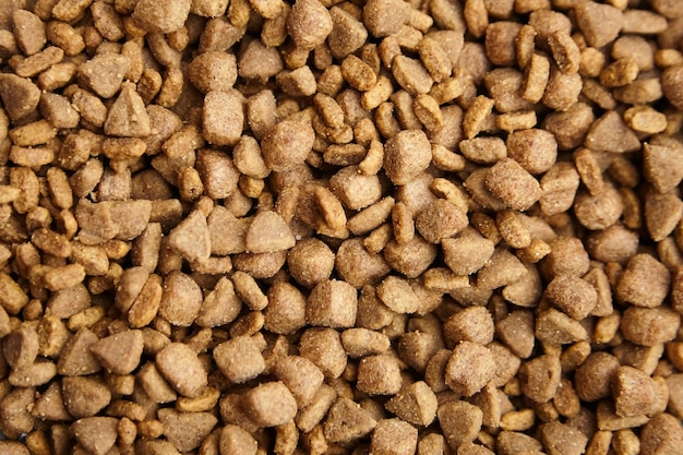 Dried food for dogs and cats