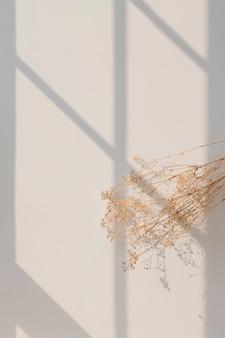ベージュの壁に窓の影が付いた乾燥カスミソウ