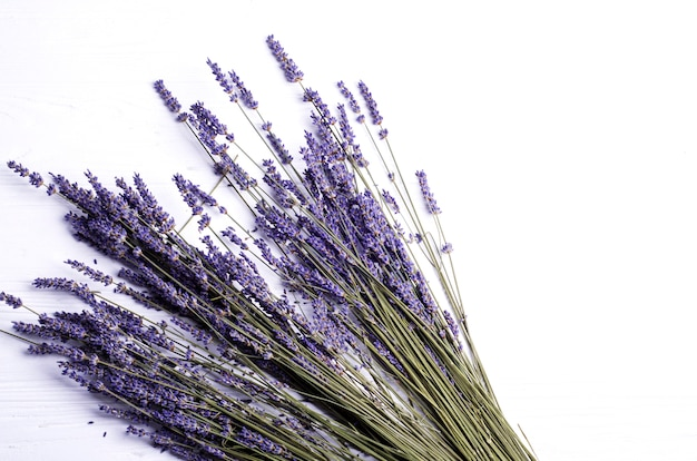Dried lavender bouquet on a white background. copy space