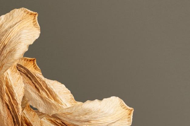 ベージュの模様の乾燥した葉