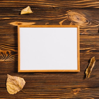 Dried leaves near frame