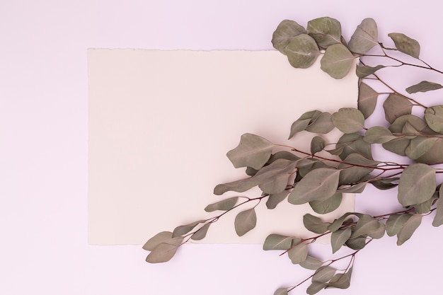 Dried leaves with copy space background