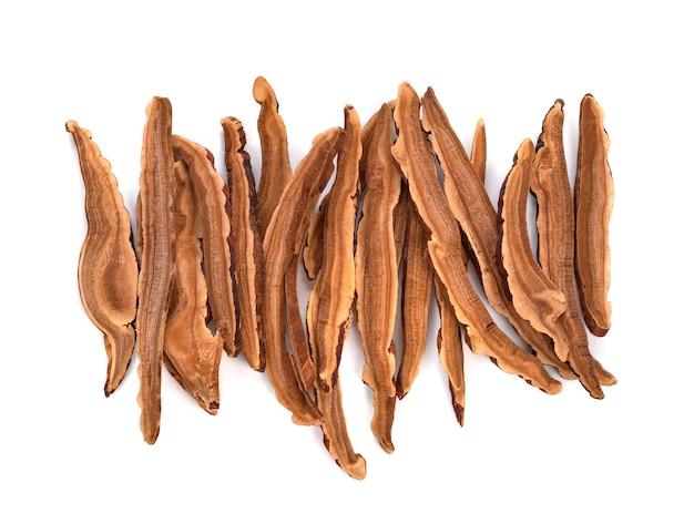말린 된 lingzhi 버섯 흰색 배경에 슬라이스