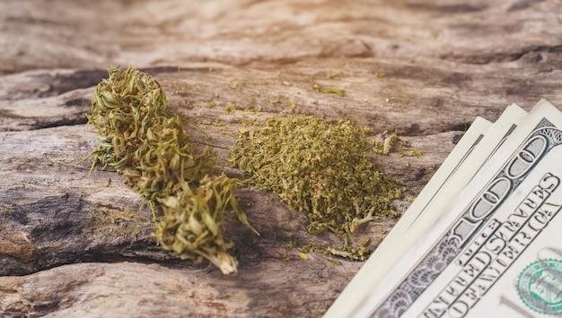 달러 지폐와 말린 된 의료 마리화나
