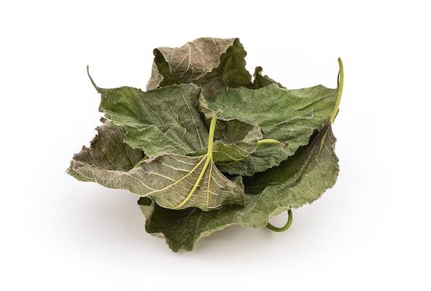 Сушеные листья шелковицы зеленые, изолированные на белом.