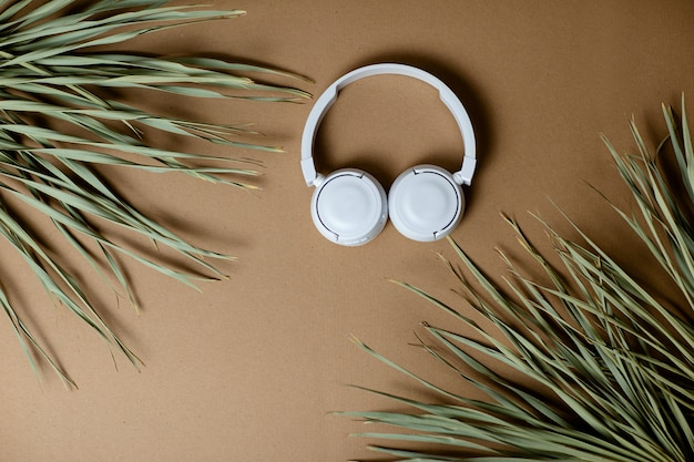 Dried palm leaves on craft paper background. white wireless headphones on craft paper.