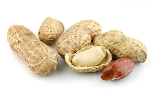 白の乾燥ピーナッツ