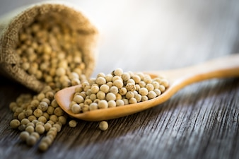 Dried pepper ball on wooden spoon,copy space.