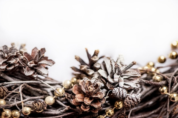 Dried pine cones winter natural border