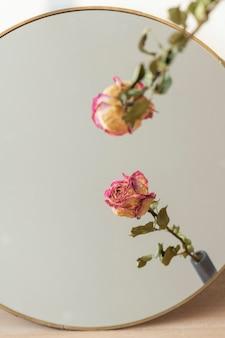 둥근 거울에 말린 된 핑크 장미 반사