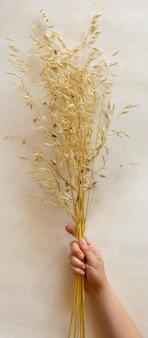 천연 매니큐어와 여성 손에 말린 식물 꽃다발. 최소한의 식물표본관 잎. 베이지색 파스텔 배경에 사진입니다.