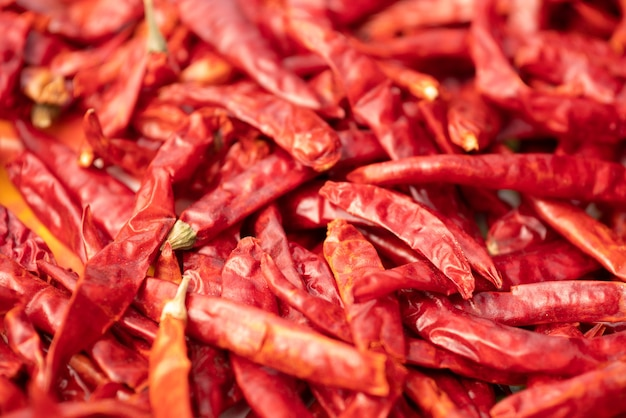 Dried red chili, asian seasoning