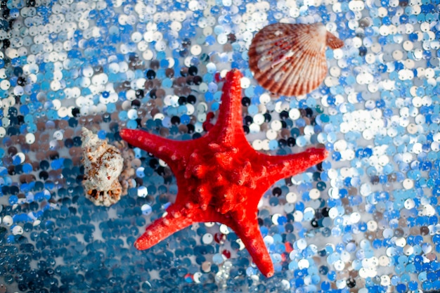 Dried red sea starfish on silver cloth