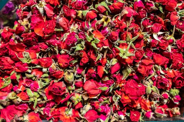 Dried red tea rose flowers close up