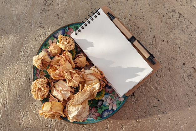 Dried rose flowers on old vintage plate in sunlight