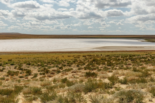 Dried salt lake in the steppe of kazakhstan, aral district of kyzylorda region.