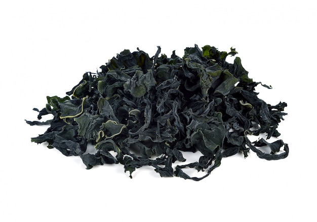 Dried seaweed isolated