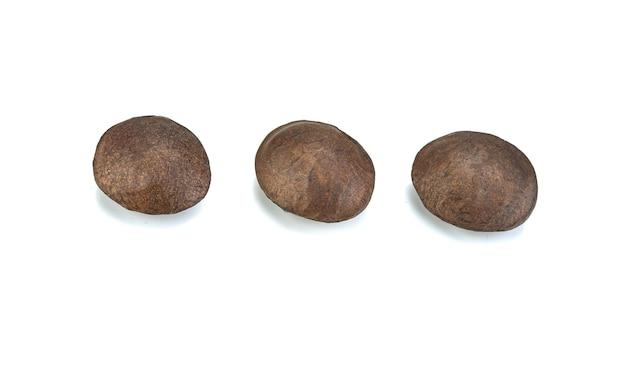 分離されたサチャ果実の乾燥種子