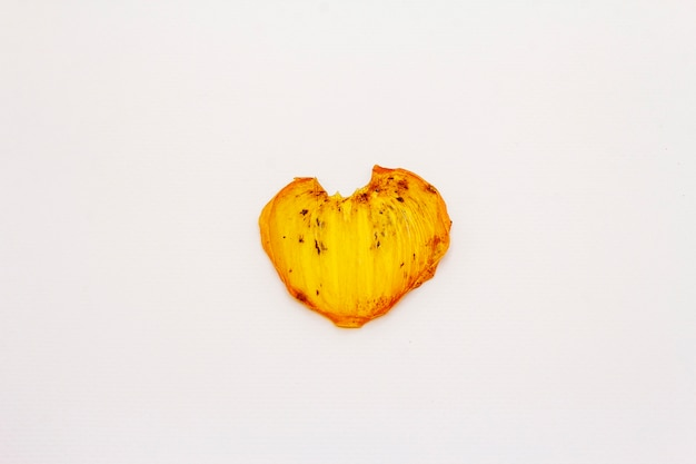 Dried single slice of persimmon isolated on white background