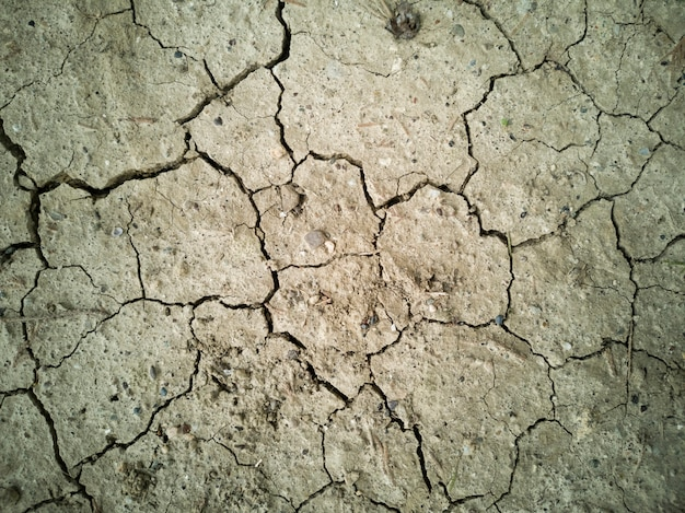 Dried soil texture background