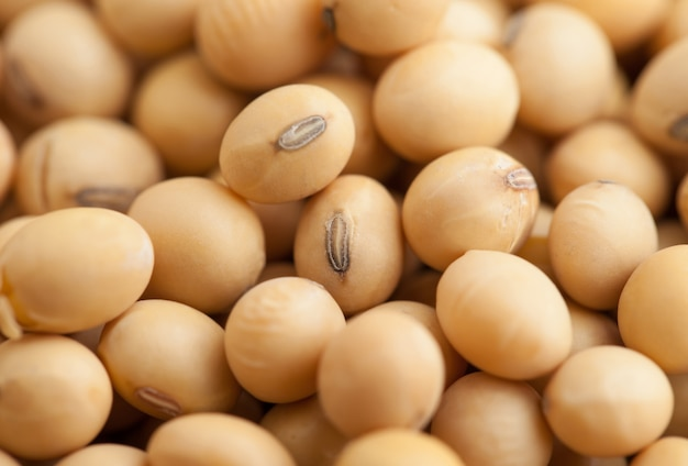 Dried soybeans nature food background