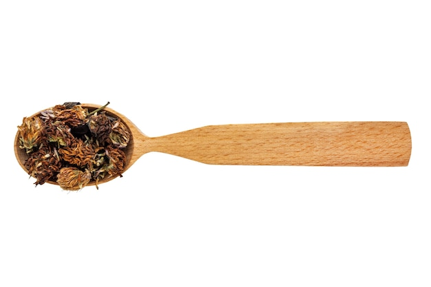 Dried trifolium in a wooden spoon on a white background.