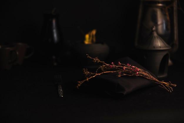 Ramoscelli secchi in un ambiente buio