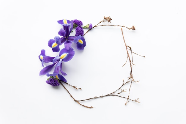 Dried twigs and irises