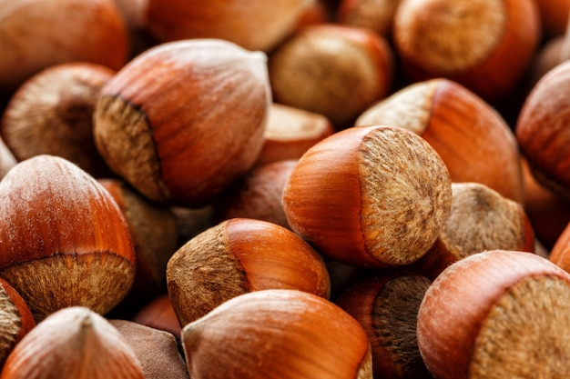 Dried unshelled hazelnuts seeds of whole nuts as