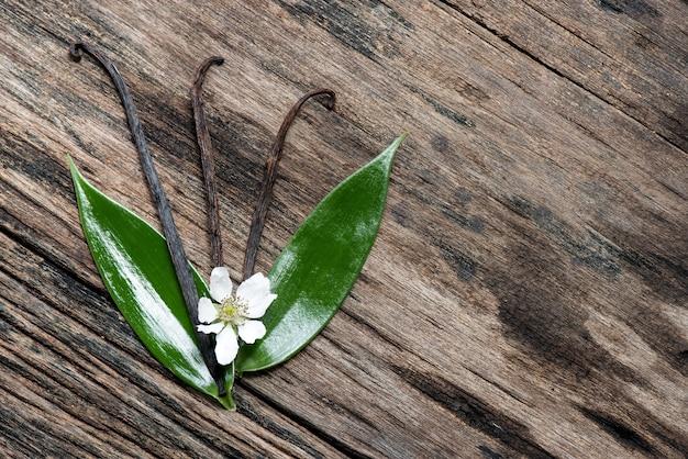 Сушеные стручки ванили и зеленый лист. вид сверху, плоская планировка.