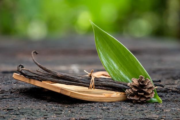 Сушеные стручки ванили и зеленый лист.