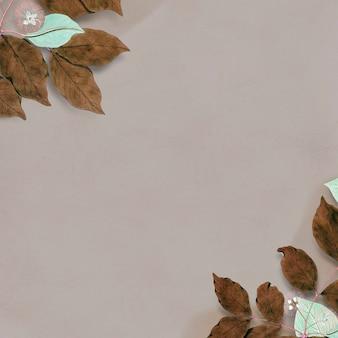 乾燥した冬の葉は空白のフレームを飾った