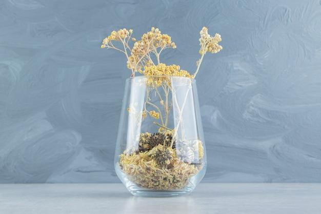 Fiori gialli secchi dalla tazza di vetro.