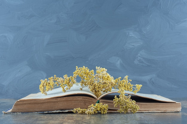 Dried yellow flowers on top of open book.