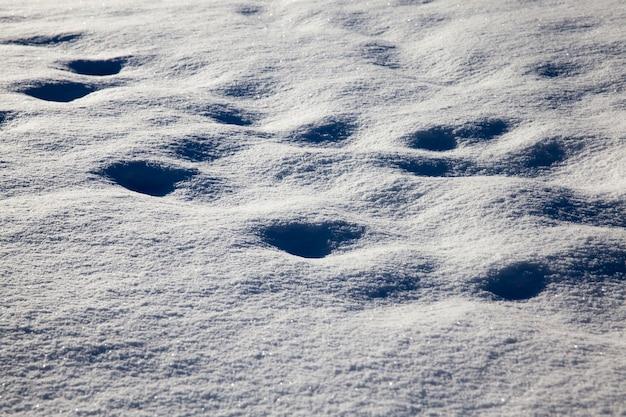 Drifts after snowfall