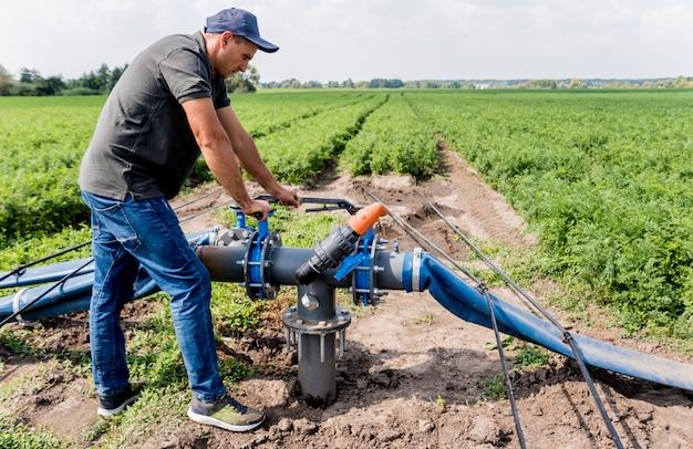 Система капельного орошения. водосберегающая система капельного орошения используется на молодом поле моркови. работник открывает кран