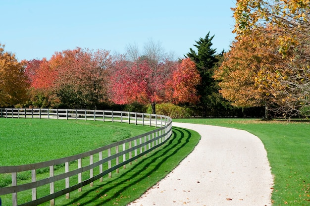Driveway in the hamptons, new york