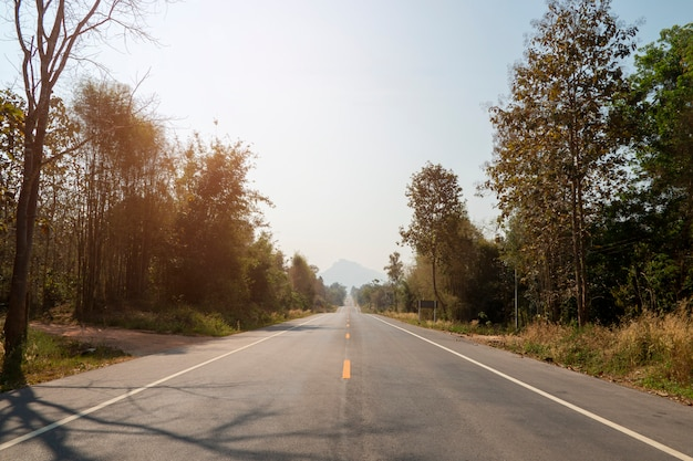 Driving on an empty asphalt road through with tree.