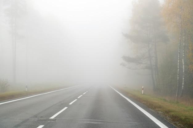 안개 속에서 시골 도로에서 운전. 악천후 조건에서 운전의 위험에 대한 그림.