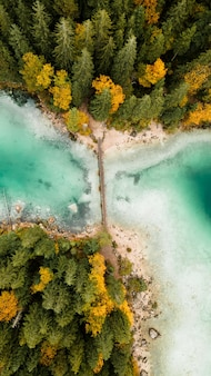 Drone photo of lake, bridge, forest, and turquoise water in bavarian alps