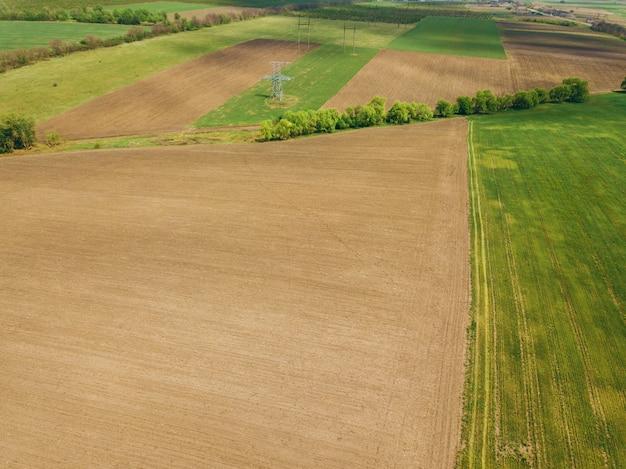 Дрон фото зерновых сельскохозяйственных угодий в весеннее время