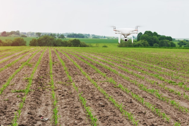 Drone quad copter with high resolution digital camera on green corn field