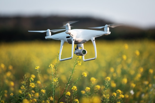 Drone quad copter on yellow field