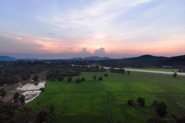 Drone shot aerial view landscape scenic of rural agriculture rice field with evening sunset atmosphere