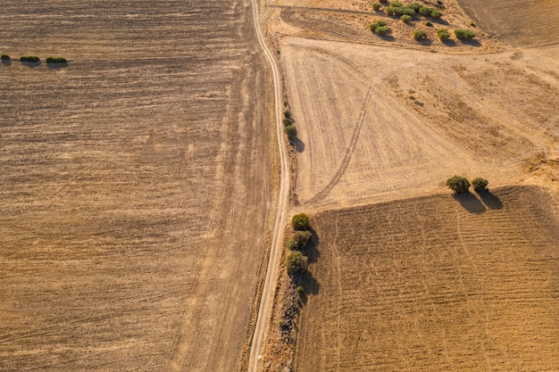 Drone shot of a field with a road