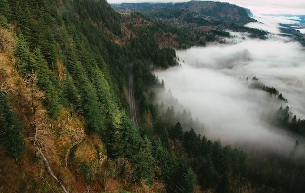霧に覆われた丘の上の森の中の道路のドローンビュー