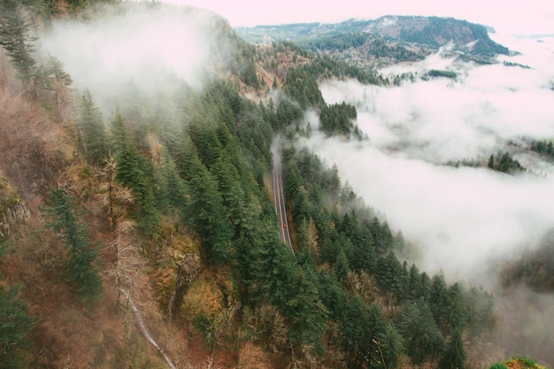 Drone view of a road in a forest on a hill covered in the fog - perfect for backgrounds
