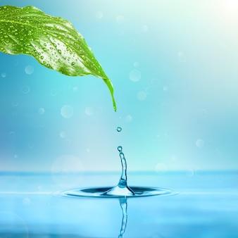 白い壁の葉から水に滴る雨のしずく