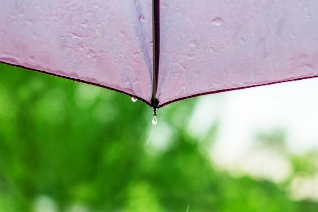 Капли дождя стекают с зонтика во время дождя_